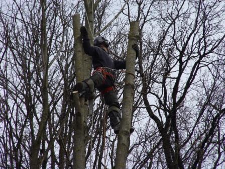 Klettern Professionell abgesichert