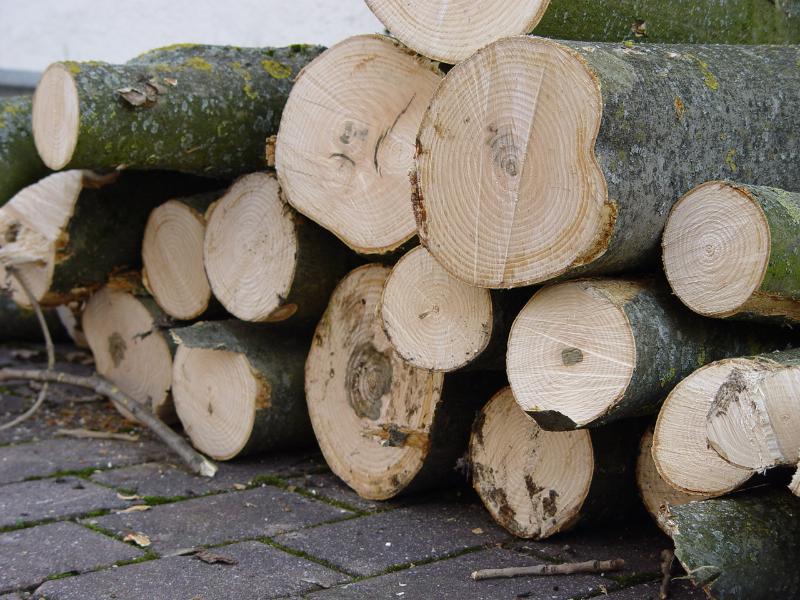 Metzerholz zum Selberschneiden